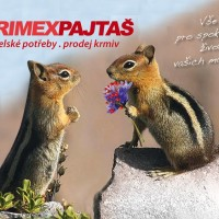Zverimex Pajtaš, spokojená zvířátka